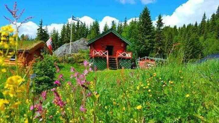 Fjellgården i villmarken