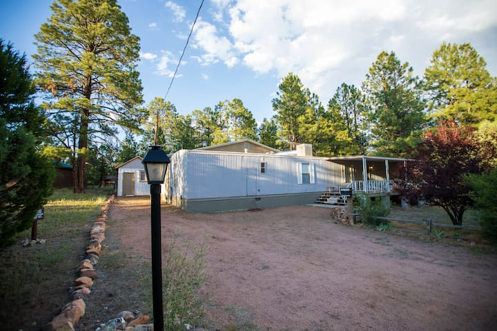 Cabin Style Home Among Ponderosa Pines