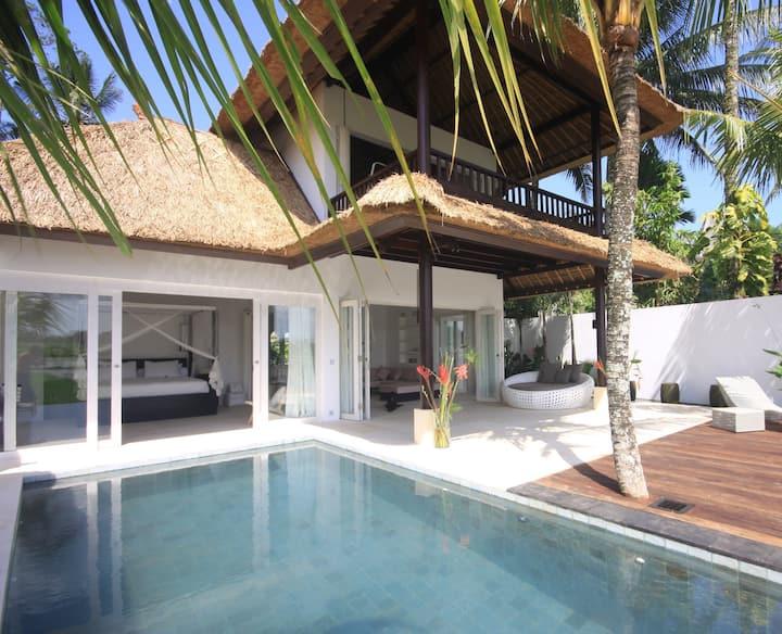 Harvest Moon-Designer Villa in Ricefield Near Ubud