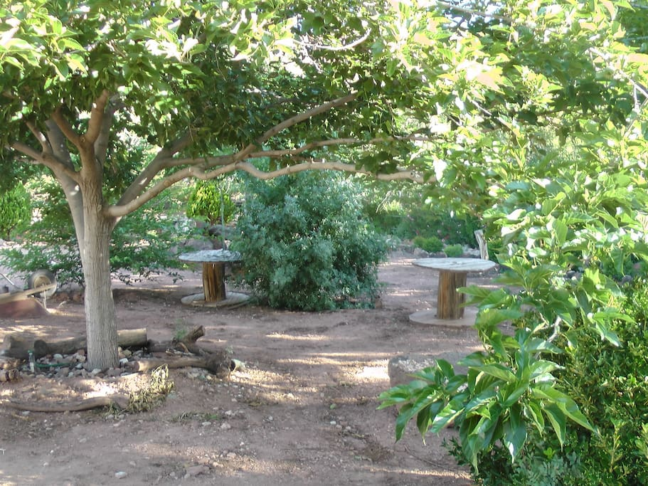 A relaxing shaded area to wander about or sit for a while in the lawn swing (not pictured).