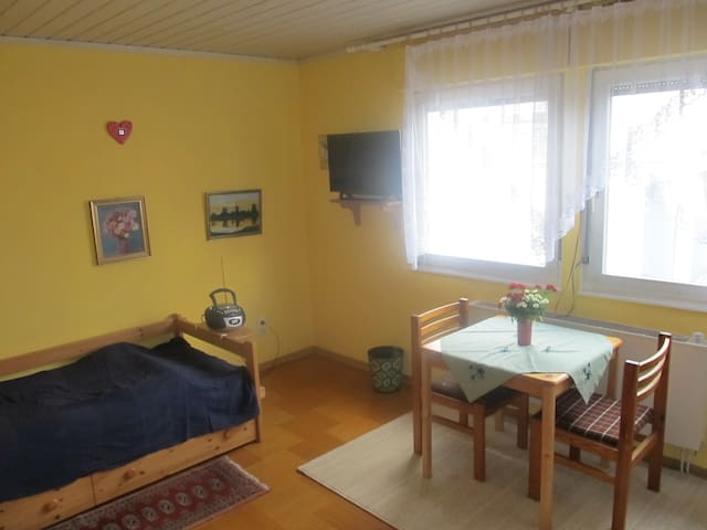 A friendly 25 m² room with a nice host - Griesheim - House