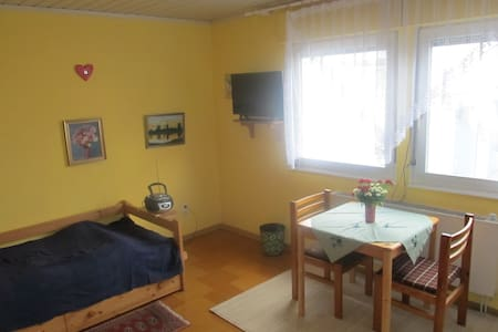 A friendly 25 m² room with a nice host - Griesheim - 一軒家
