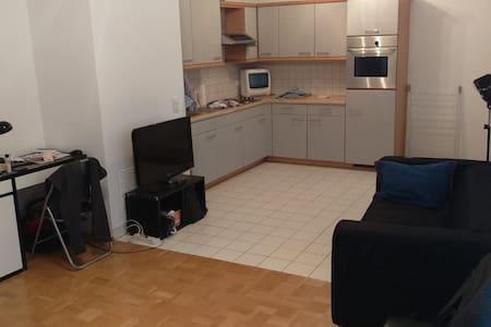 Schöne Wohnung um Wien zu besichtigen (mit Garage) - Lakás