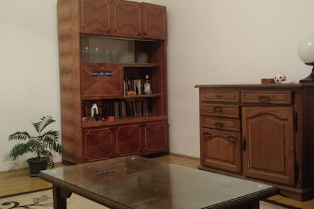 Spacious room with access to terrace and garden - Beograd - Dom