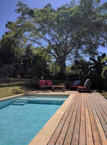 Casa Nasua - Montezuma - Casa