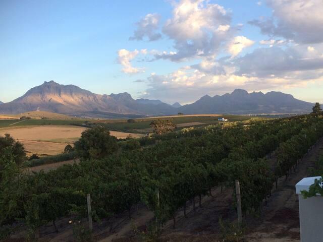 Lovely room on  beautiful winefarm - Stellenbosch - Casa