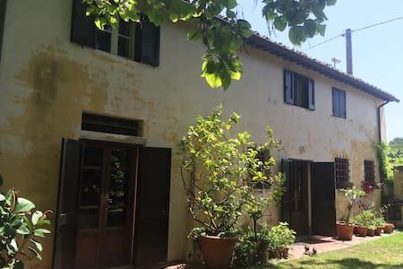 San Rossore Rooms (Camera 1) - Pisa