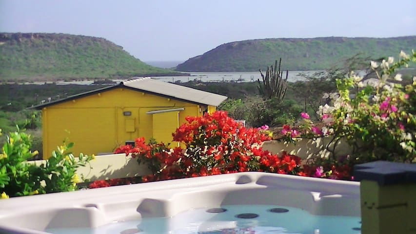 Amazing View with jacuzzi, privacy and comfort