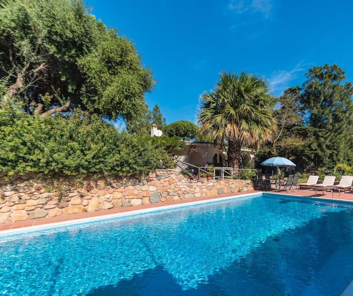 Villa with Pool 20 meters from a sandy beach!
