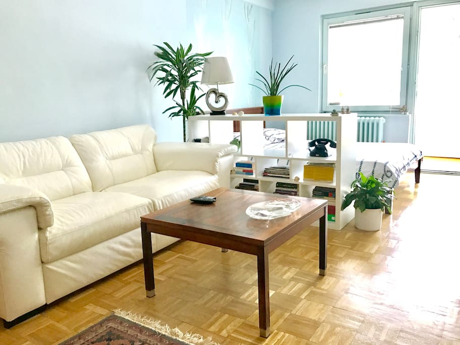 View on the spacious living area with the comfortable white, real leather sofa.