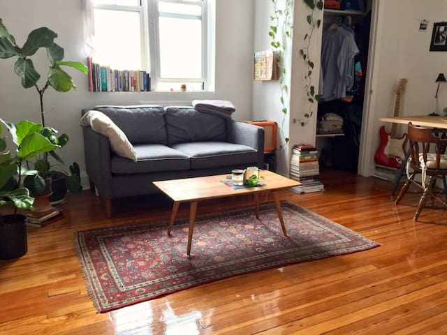 Top-Floor Studio In Quaint, Quiet Brownstone - Brooklyn - Apartment