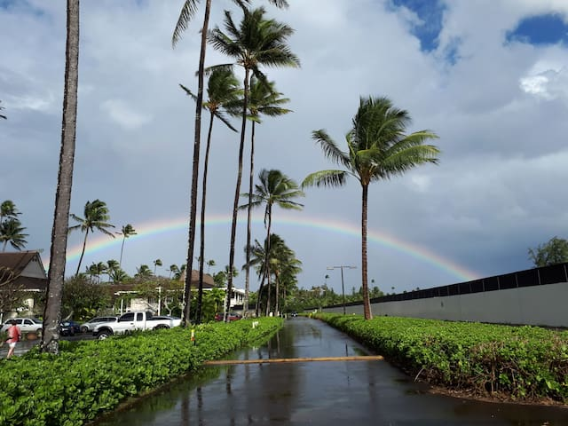 One of our most spectacular rainbow photos : ) Enjoy our amazing and beautiful,  'Garden Isle!'