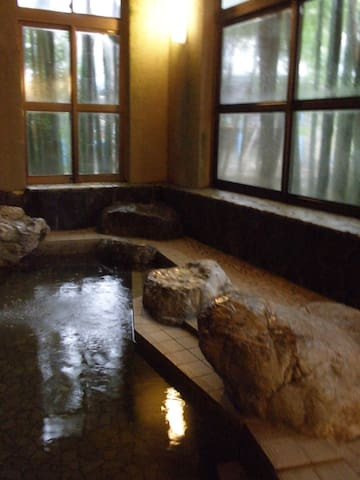 Onsen Ryokan near Tokyo!! 都心から約90分、岩蔵温泉の老舗旅館。 - 青梅市