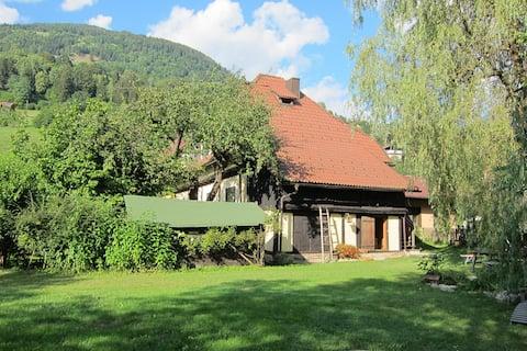 Marvellous apartment APE near Bad Kleinkirchheim