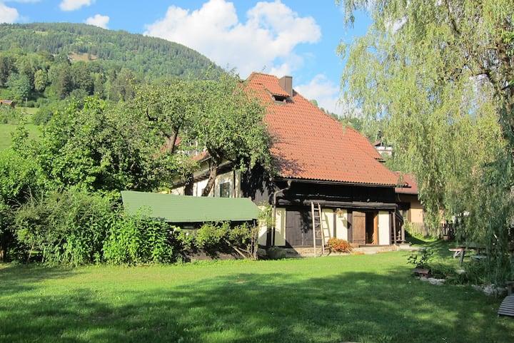 Marvellous apartment  RED near Bad Kleinkirchheim