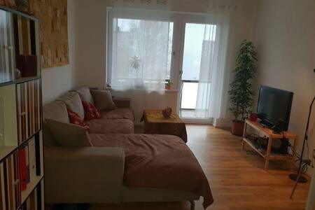 Gemütliche Wohnung mit großem Balkon