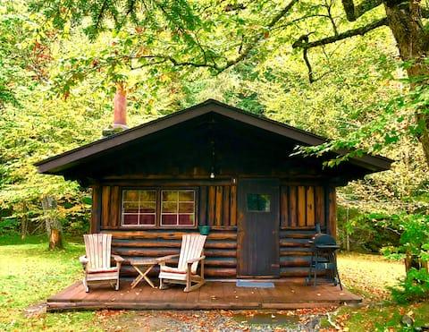 """Rustic Log Cabin #1 - """"Rustic Retreat"""""""