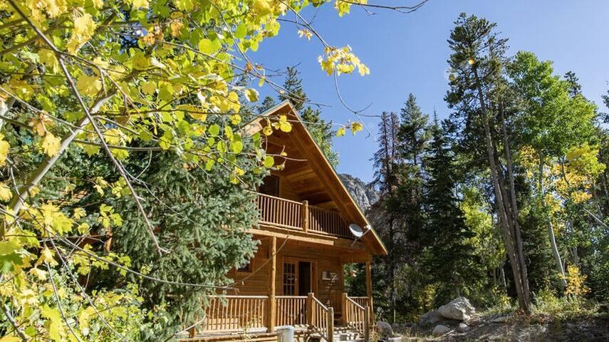Forest Creek Cabin  -  The Skiing is Great- Beautiful Mountain Getaway!