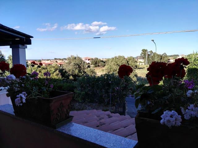 bborchidee - Provincia di Olbia-Tempio - Bed & Breakfast