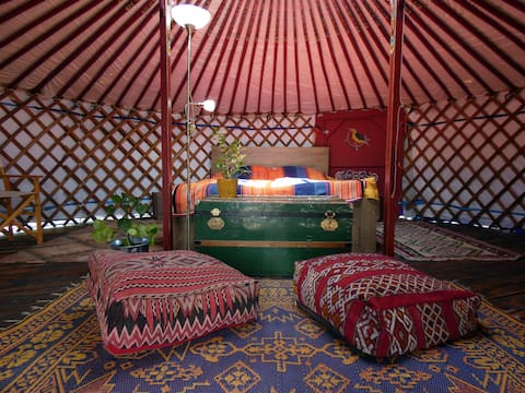 The Green Woodpecker - for yurt dwellers!