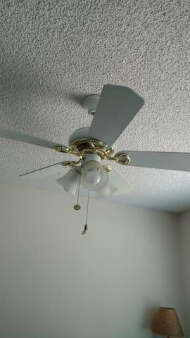 Overhead light and fan