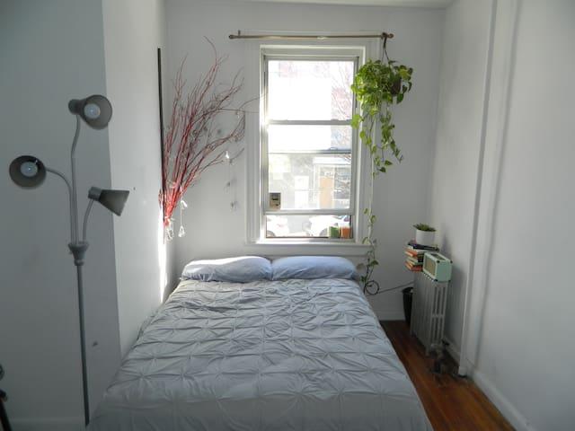 Spacious & sun-kissed room in Williamsburg