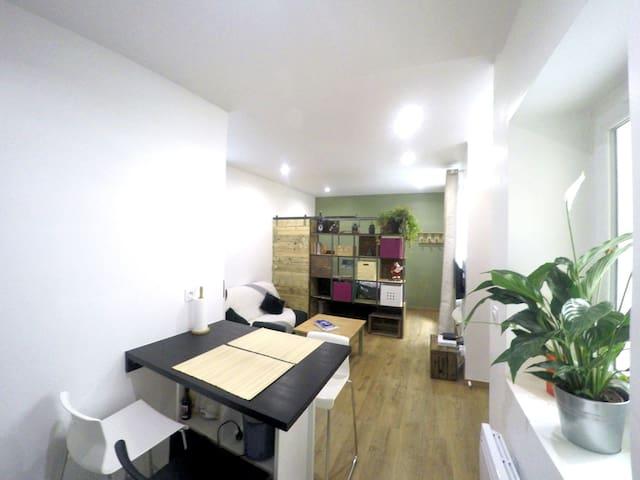 Studio cosy de 25 m2 au coeur des pentes