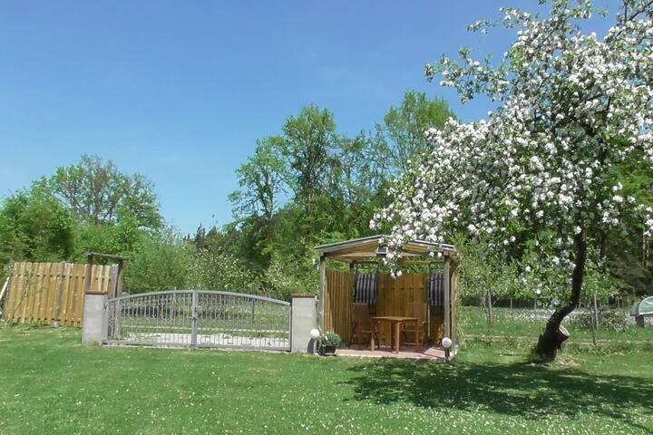 Blick vom Haus auf die Parkbucht vor dem Tor und den überdachten Freisitz mit Stühlen, Tisch und Liegen.