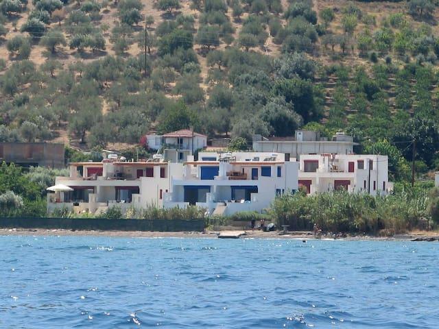 μεζονετα διπλα στην θάλασσα - Kalloni
