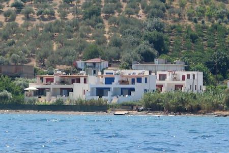 μεζονετα διπλα στην θάλασσα - Kalloni - Rumah