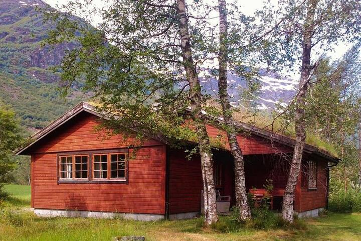 4 star holiday home in Oldedalen