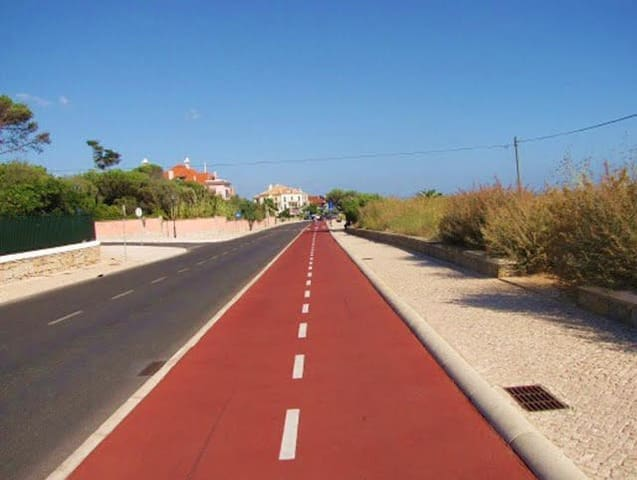 Cycle Lane  300 mts