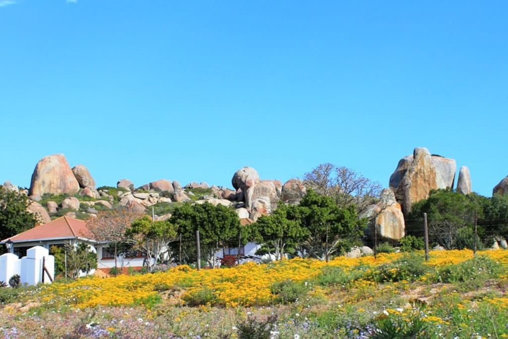The West Coast Estate, surrounded by stunning granite rocks, St Helena Bay South Africa