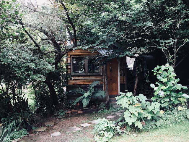 Entrance door and front of tiny house in summer.