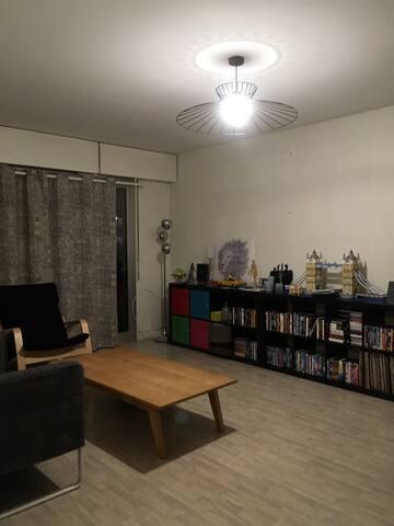 Appartement lumineux et spacieux à Bourg La Reine