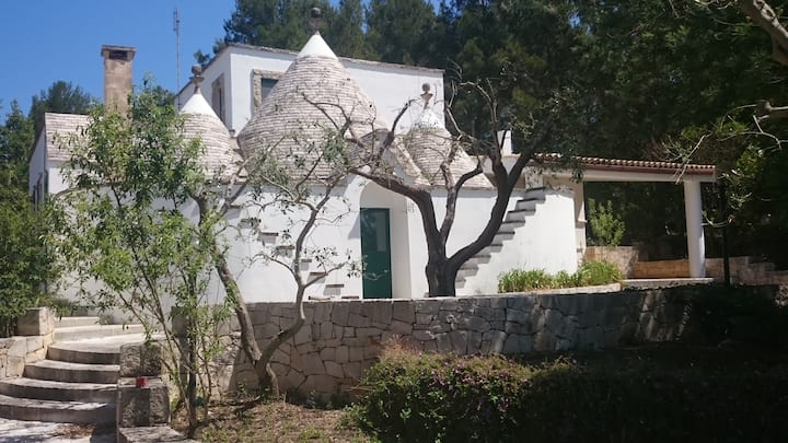 House with trulli in the woods