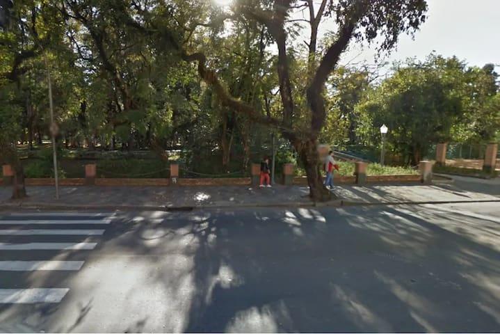Parque José Affonso Junqueira