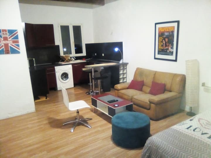 Grand studio cosy quartier cours julien la plaine