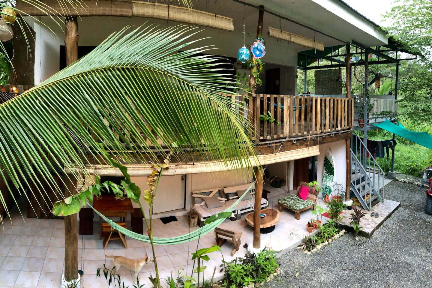Housefront! The whole upstairs is for rent, we are living downstairs. Pura Vida!