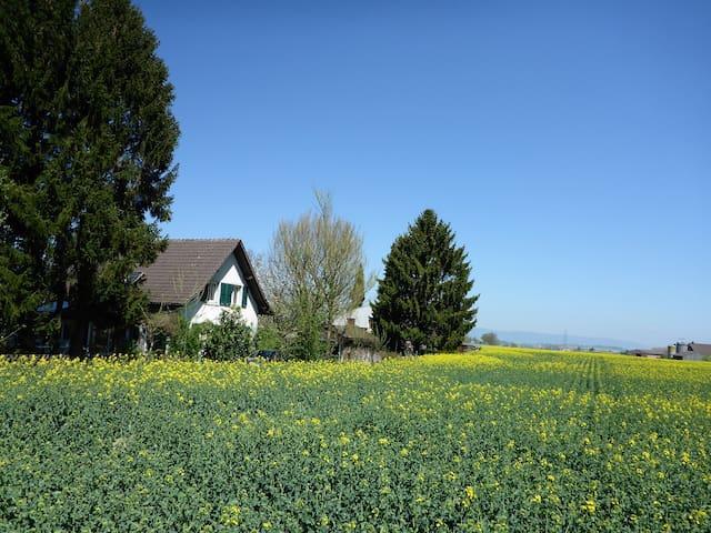 Lausanne beekeepers home