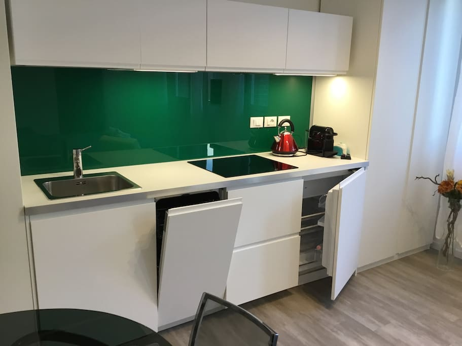 Green glass kitchen with dishwasher
