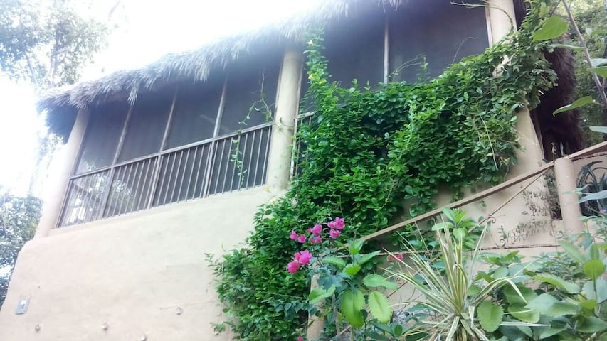 """Casa Maria en la Manzanilla """"El Nido"""" - La Manzanilla - Casa"""