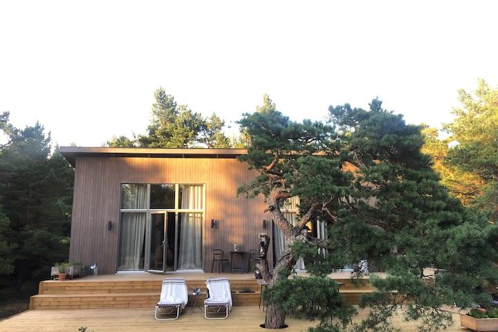 New stylish summerhouse on Södermöja