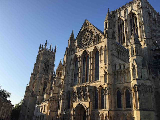 YORK MINSTER VIEW-NEXT TO SHAMBLES-COSY 1 BED APPT
