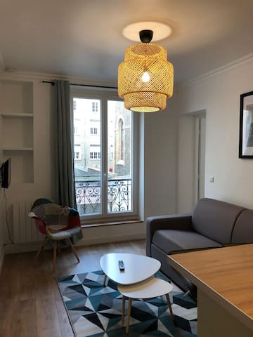 Beautiful, Warm and Convenient Flat in Paris
