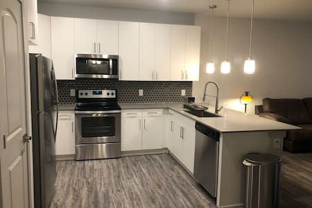 Beautiful 1bd apartment w/balcony & upgraded kitch