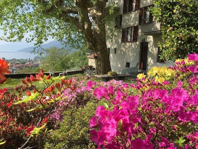 Casa vista dal giardino fiorito