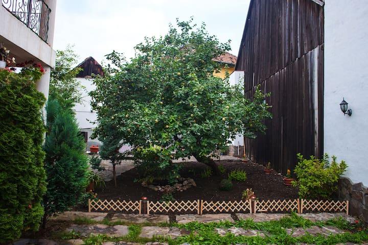 Villa Cristiani from Transylvania