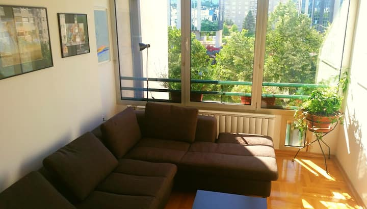City Center Flat for Business/Travel with parking