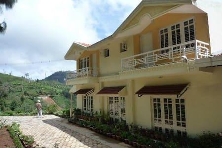 Ecorganic Pinewood Retreat,Nilgiris - Kotagiri - Dom